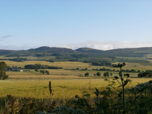 View of the Sidlaws beyond