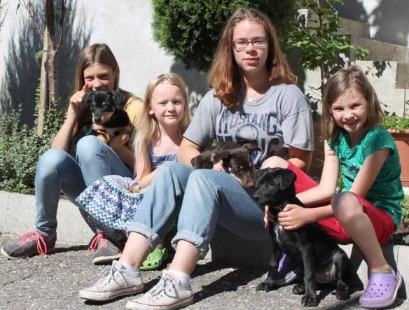 Simone Buteweg (Zweite von rechts) aus Freiburg ist in Haus und Hof bei Familie Hospach bestens integriert. Mit auf dem Bild sind die drei Töchter der Familie und drei junge australische Hütehunde
