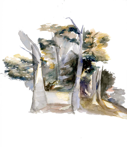 Watercolor study in Elysian Park by Kate Sammons