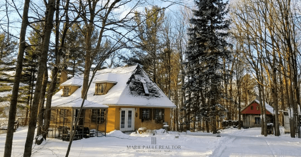 mariepauleREALTOR 20190113 1255 Ch de Touraine - cold afternoon in golden sunlight 2 Watermarked