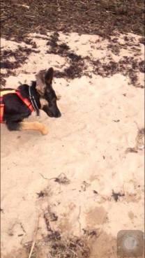 FM Kerro på stranden