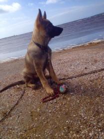 FM Labina på stranden april 16
