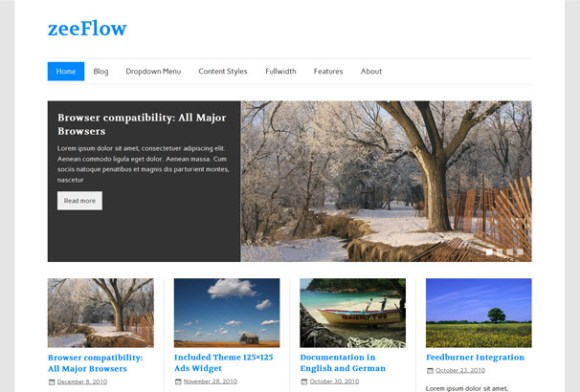 zeeFlow WordPress sablon