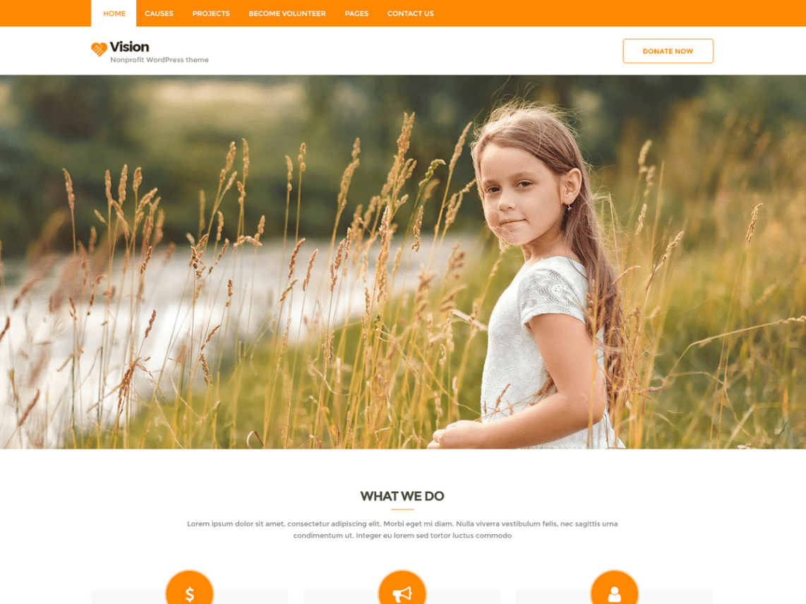 Vision Lite WordPress Theme