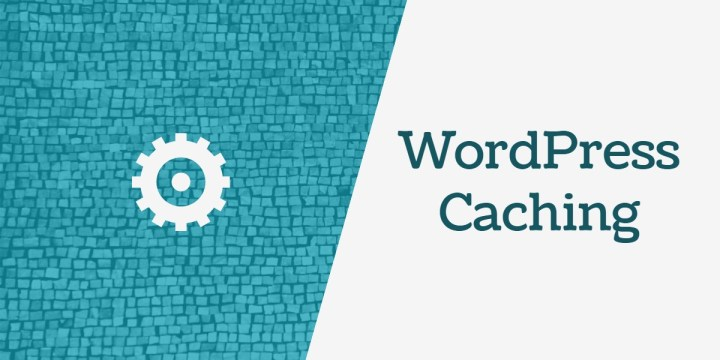 wordpress Start Caching
