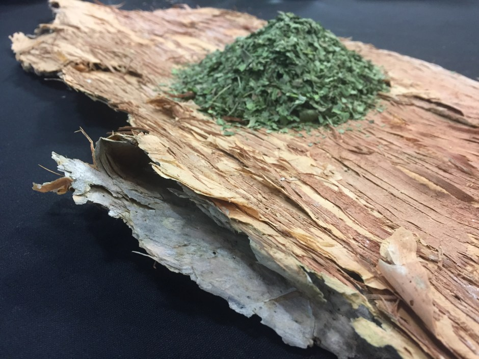 Aboriginal tea on bark