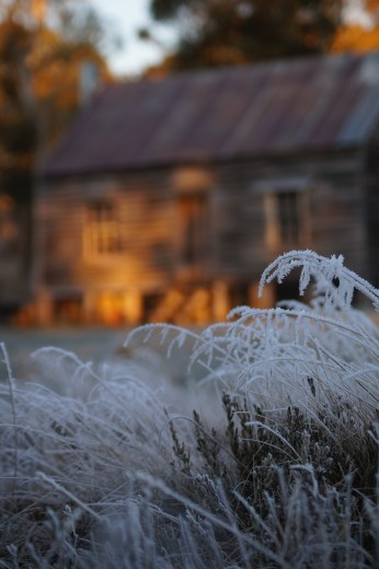Gooandra at dawn with frost.