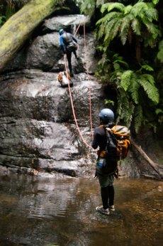 Serendipity, fern waterfall abseil