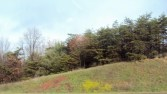 View of hill/trees