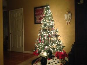 Christmas tree_2013