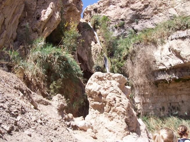 Engedi Desert, Israel