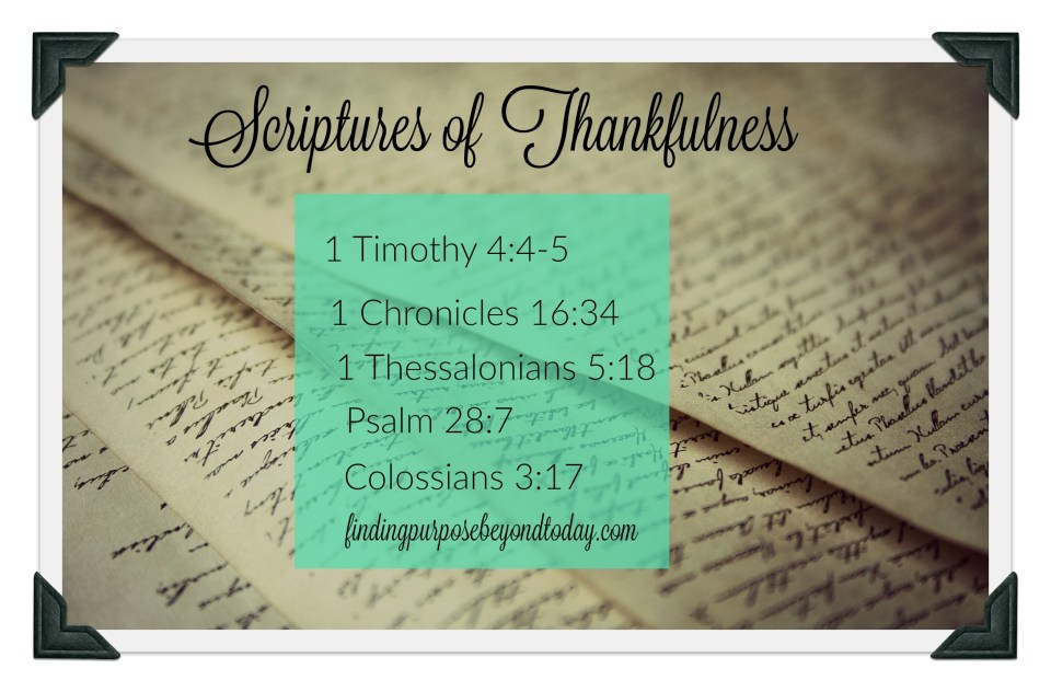 5 Scriptures of Thankfulness for a Lifestyle of Thanksgiving