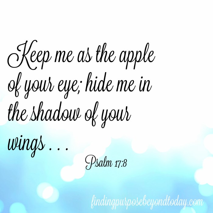 Psalm 17-8