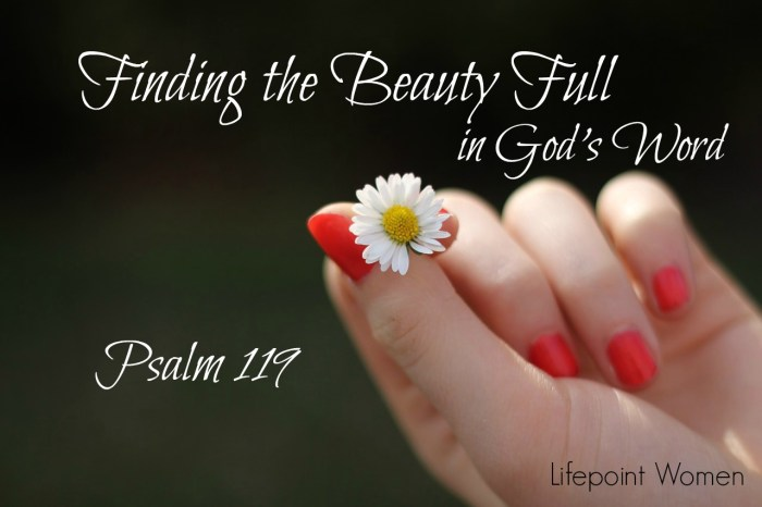 Finding the Beauty Full