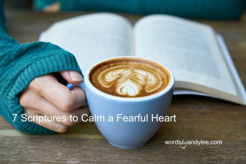 Help to Calm Your Fearful Heart