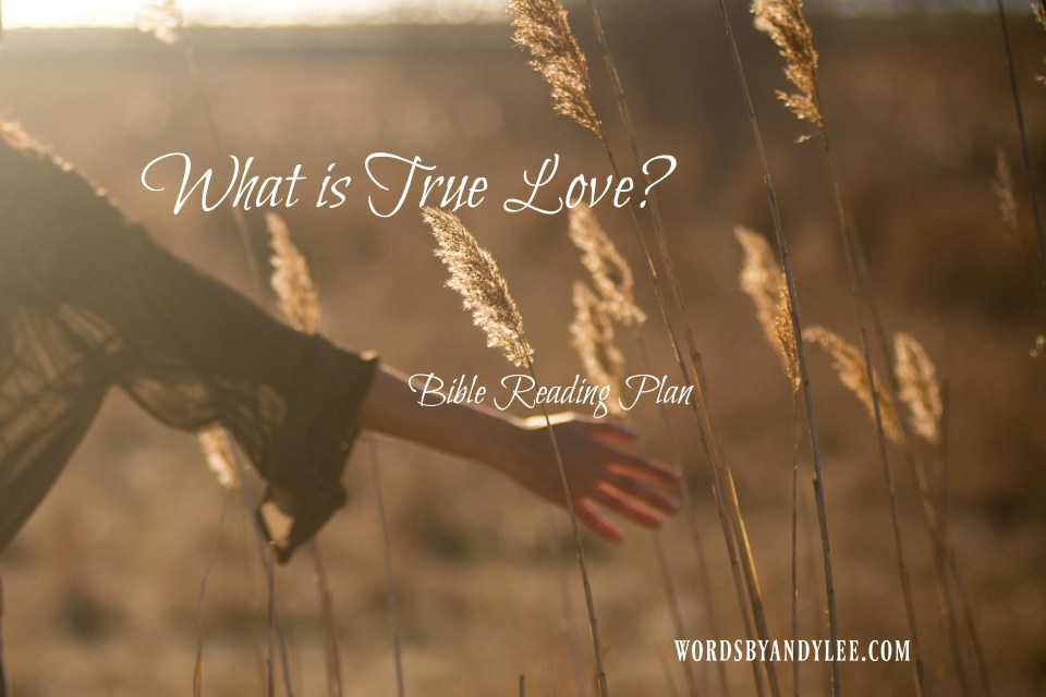 The Fruit of the Spirit: What is True Love?
