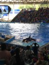 Sea World!