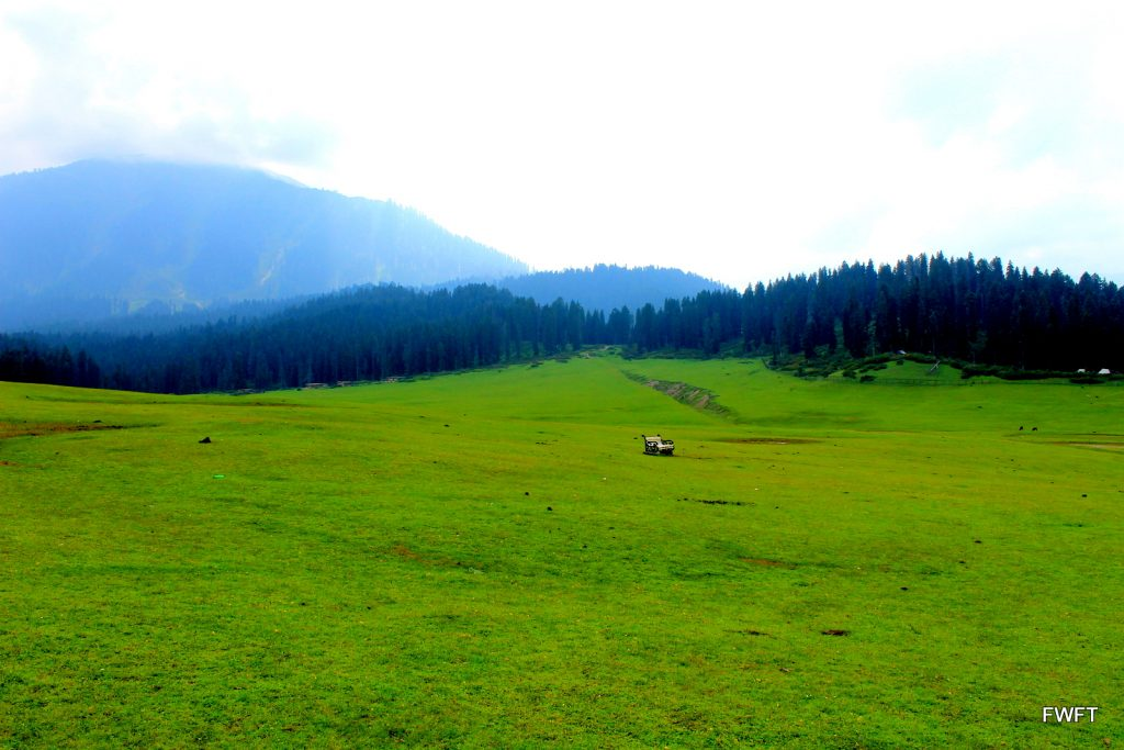 Doodhpathri-Kashmir