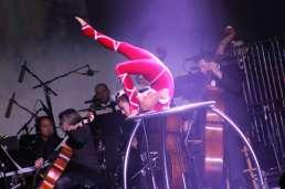 Cirque 25
