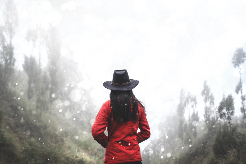 Woman in black hat and red coat facing away towards snowy, blurry landscape