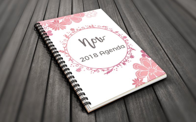 Introducing the Now Planner 2018 Edition