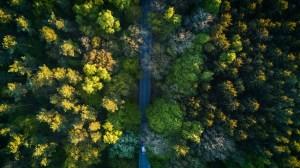 ESG investing environmental screen
