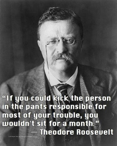 Teddy Roosevelt Quotes Custom 50 Best Theodore Roosevelt Quotes About Success  Word Quotes