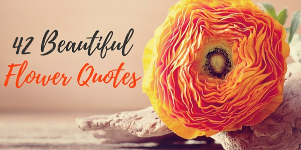 flower-quotes