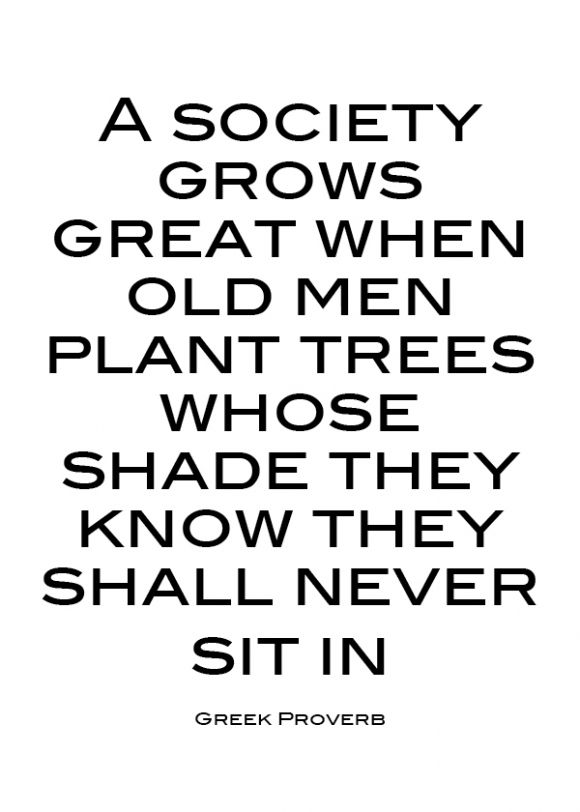 A society grows great when old men plant trees whose shade they know they shall never sit in. - Greek Proverb