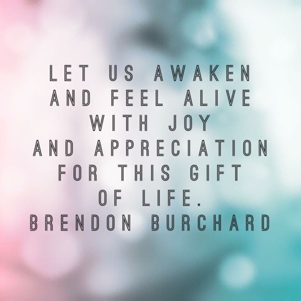 Let us awaken and feel alive with joy and appreciation for this gift of life. - Brendon Burchard