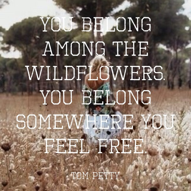 You belong among the wildflowers. You belong somewhere you feel free. Tom Petty - Wildflowers