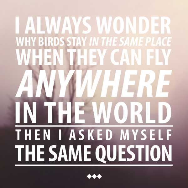 I always wonder why birds stay in the same place when they can fly anywhere in the world. Then I asked myself the same question.