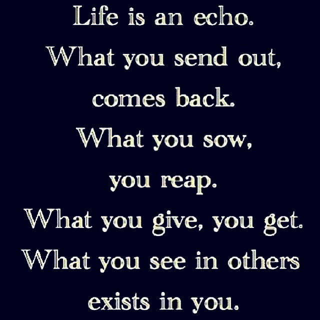 Life is an echo. What you send out, comes back. What you sow, you reap. What you give, you get. What you see in others exists in you.