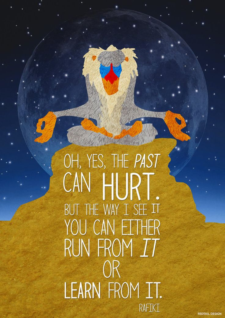 Oh, yes, the past can hurt. But the way I see it you can either run from it or learn it. - Rafiki / The Lion King
