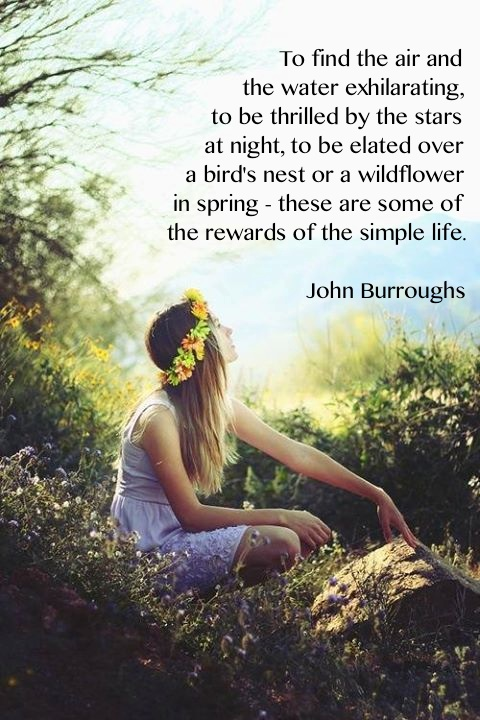 To find the air and the water to be exhilarating, to be thrilled by the stars at night, to be elated over a bird's nest or a wildflower in spring - these are some of the rewards a the simple life. - John Burroughs