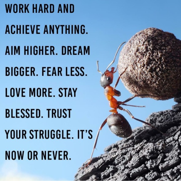 Work hard and achieve anything. Aim higher. Dream bigger. Fear less. Love more. Stay blessed. Trust your struggle. It's now or never.
