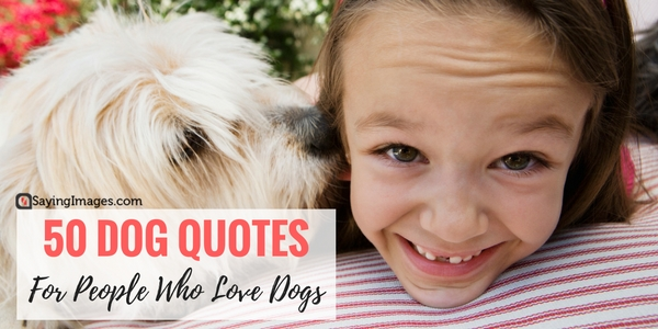 50 Dog Quotes For People Who Love Dogs Word Porn Quotes Love