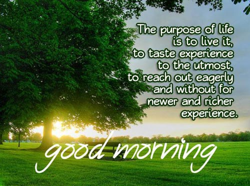 good-morning-inspirational-quotes-the-purpose-of-life