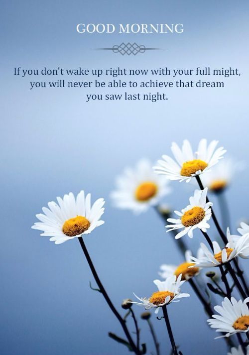 Cute Good Morning Quotes For Friend