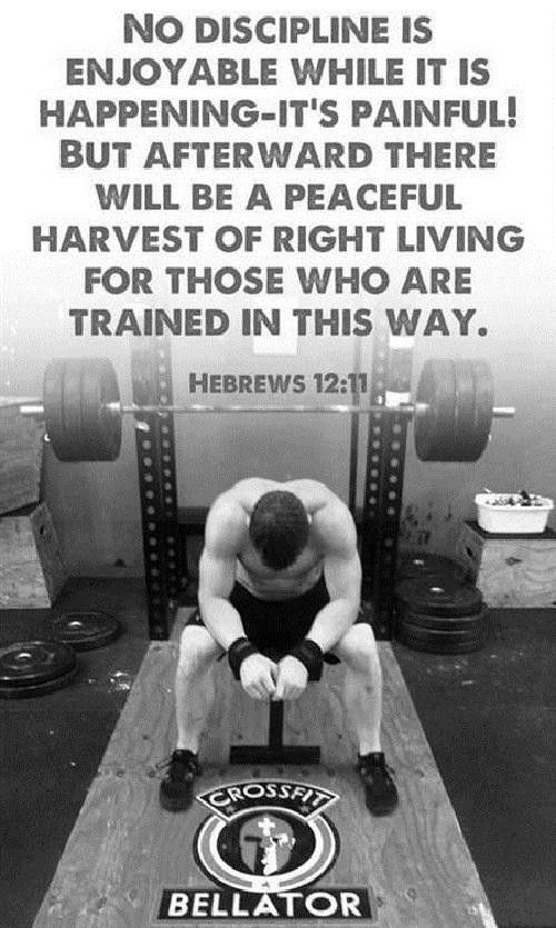 No Discipline Gym Quotes