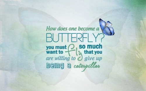 Butterfly Lovely Quotes