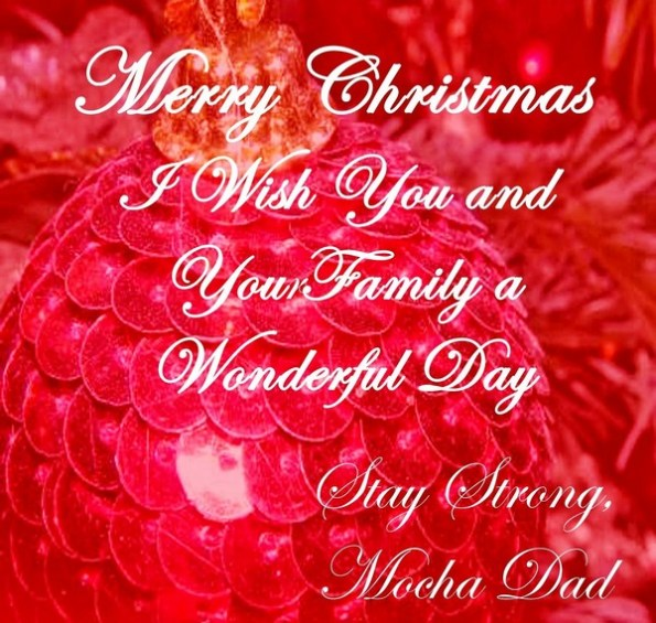 i wish you and your family a wonderful day christmas phrases and sayings