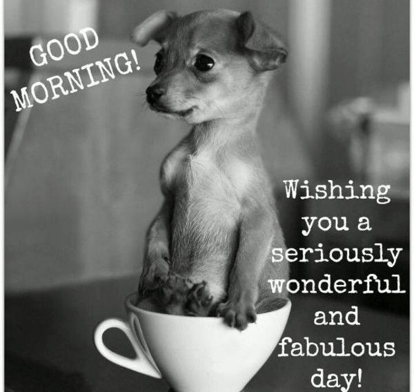encouraging good morning wish
