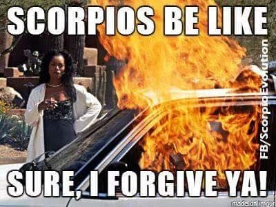 20 Best Scorpio Memes – Astrology Special - Word Porn Quotes