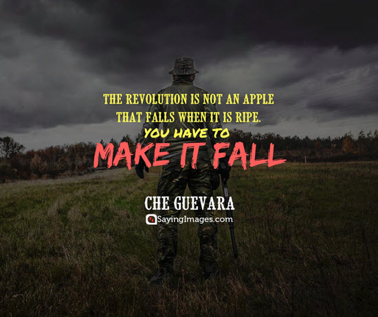 che guevara revolution quotes