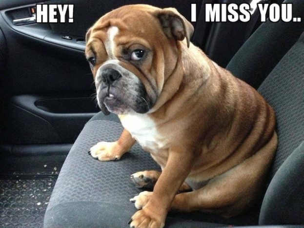 20 Super Cute Memes That Say I Miss You Word Porn Quotes Love