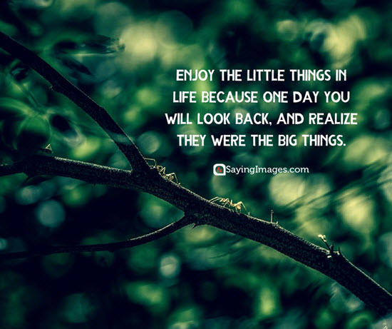 little things in life quotes