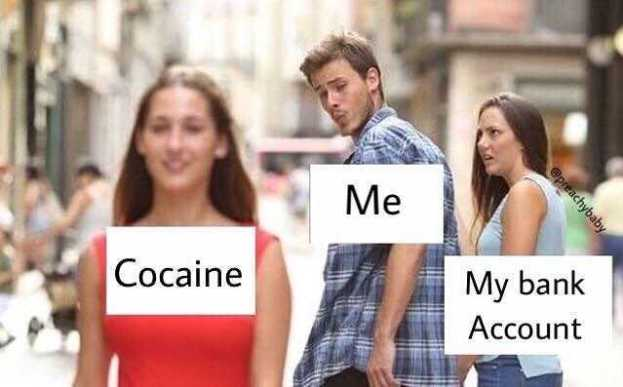 15 Cocaine Memes That Will Make You High From Laughing Word Porn