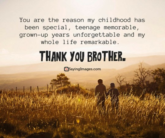 20 Fun And Loving Happy Brothers Day Quotes And Messages Word