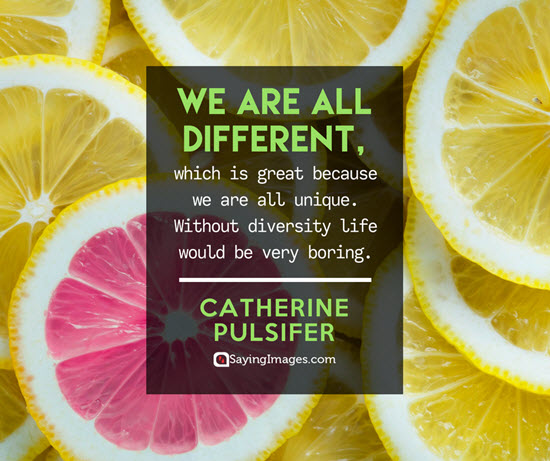 catherine pulsifer diversity quotes